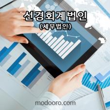 선경회계법인 세무본부(여의도) 모두홈페이지 제작 사례